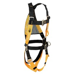 Harness B-Safe c/w Waist Belt  & Side Dee