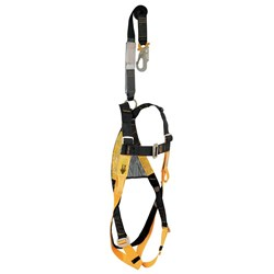 Harness B-Safe c/w Frontal  Loops & Lanyard